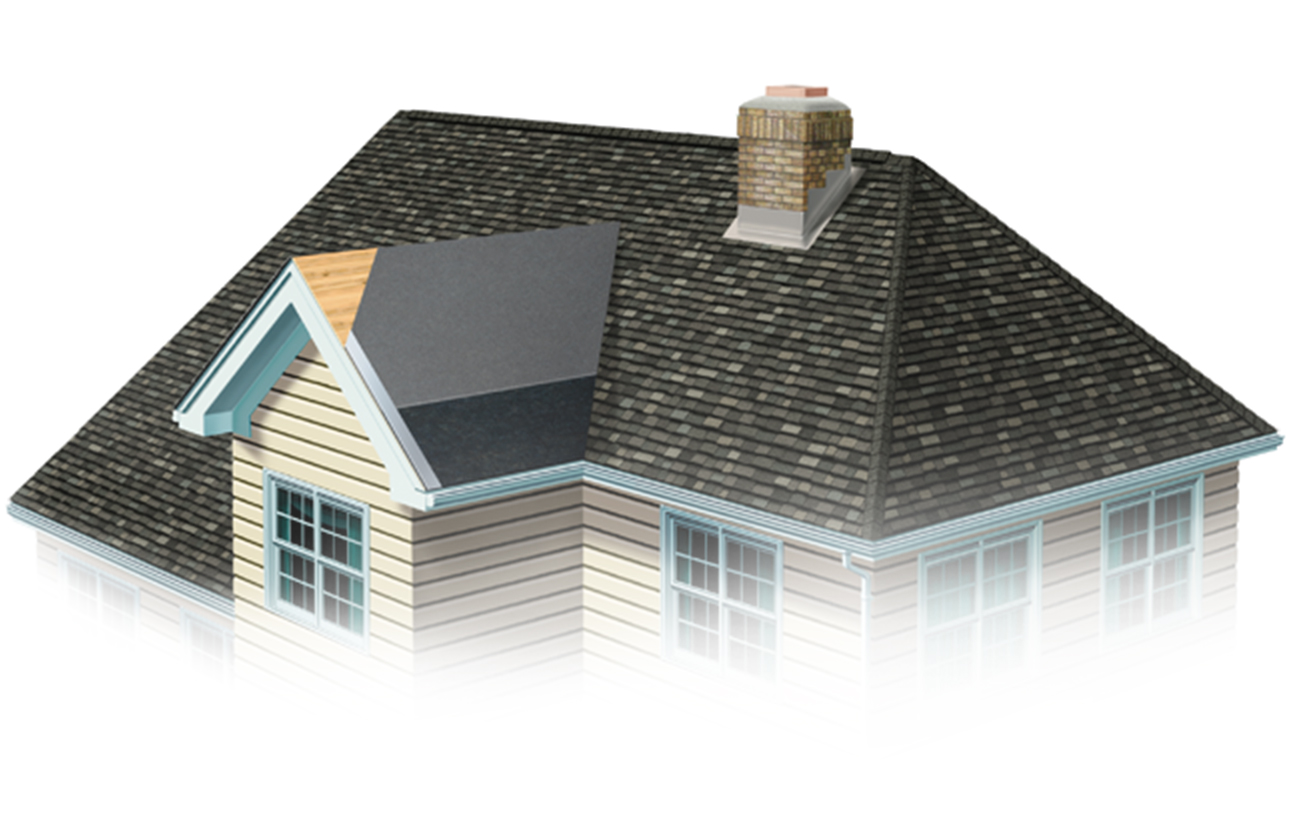 Roofing-Basics-Roof_image